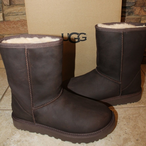 UGG Shoes   Ugg Classic Short Leather